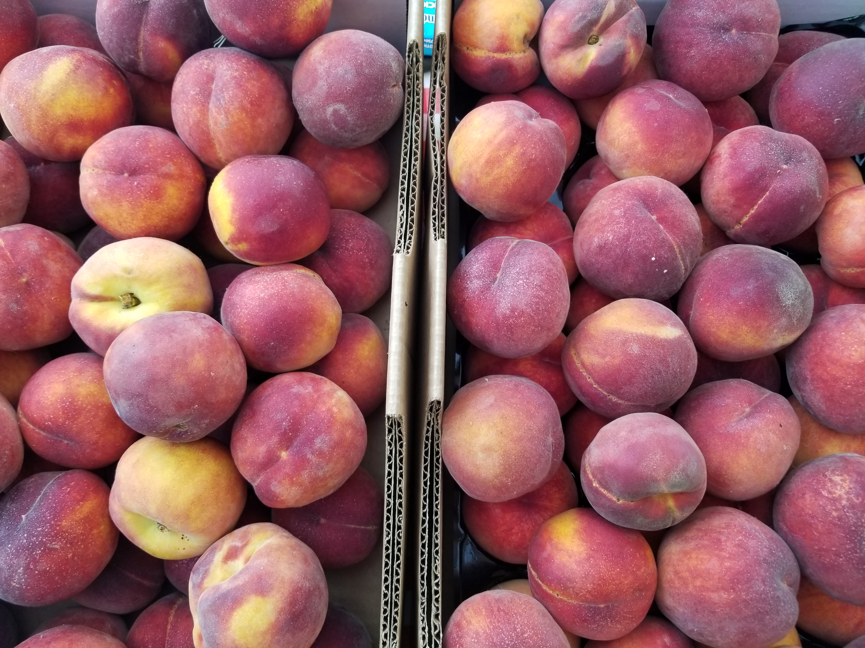 Peaches, cherries, berries and heirloom tomatoes today at